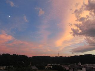 100805  s  late afternoon.jpg