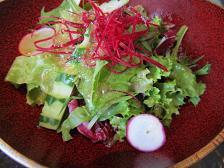 100920  s  vegetable2.jpg
