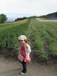 110808 s  tomita Youka.jpg