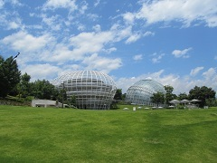 110831  s  fruits park.jpg