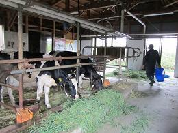 �E100908  s  farm3.jpg